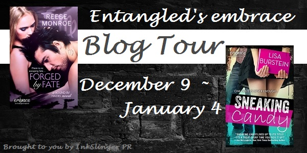 Embrace Blog Tour Banner